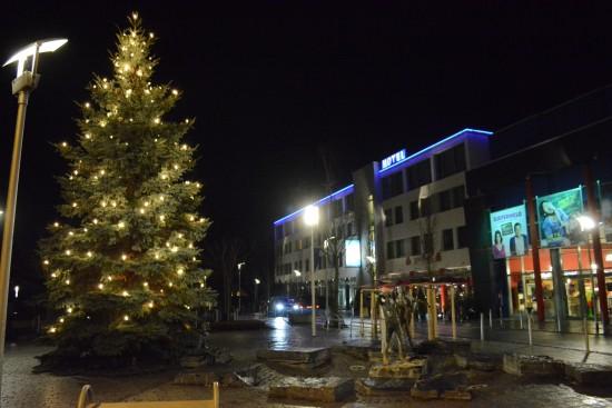 Baum am Europaplatz Bild 2